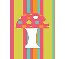 coloured Mushroom Photographic Print