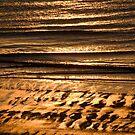 Golden sands by Alexander Meysztowicz-Howen