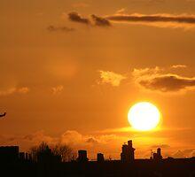 English Sunset by Katrina Vivian