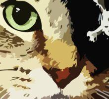Kenny The Pirate Cat Sticker