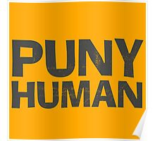 Puny Human Poster