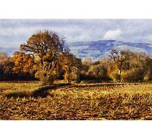 Autumn Fields Photographic Print