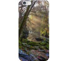 Magical Fairy Glen iPhone Case/Skin