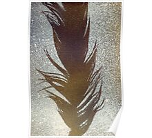 BROWN FEATHER Poster