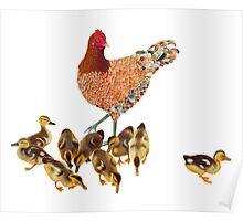 Chicken Duckling Adoption Poster