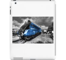 The Mallard  iPad Case/Skin