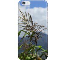 Corn in a Field iPhone Case/Skin