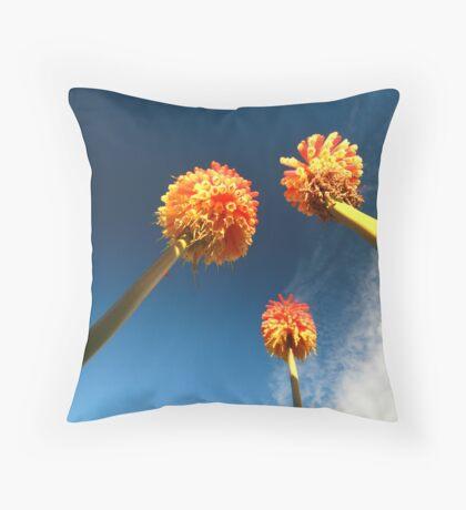 St Michaels Flowers Throw Pillow