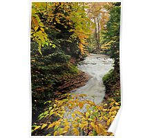 fall at bridal veil falls in cvnp ohio Poster