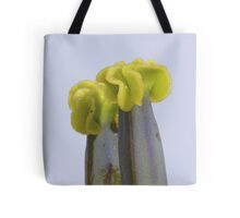 Sculptures created by nature Tote Bag