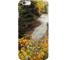 cuyahoga valley national park's bridal veil falls on a fall day iPhone Case/Skin