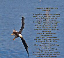 I Wish I Was An Eagle by Gail Bridger
