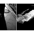 Shadow of a lady Diptych by ragman