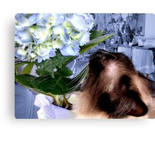 I Love Flowers!   Canvas Print