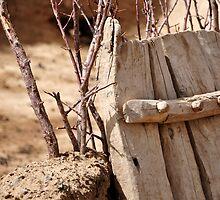 Wooden Gate by ProdigalMedic