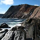 Afternoon at Outer Cove by OldBirch