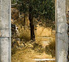 Spinalonga by Pete Foley