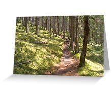 Forest Walk Greeting Card