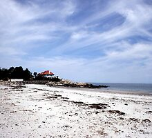 Scenic Cohasset, Massachussets by Polly Peacock