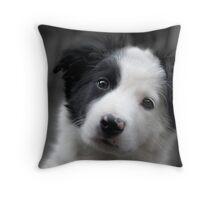 fluffy furry puppy Throw Pillow