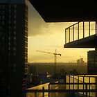 Dusk Perspective from the Balcony by Robin Webster