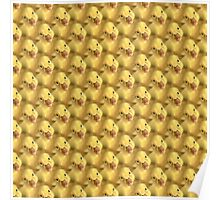 Adorable Yellow Baby Chicks Poster