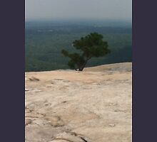 Mountain top Mens V-Neck T-Shirt