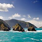 Arapawa Island by Ken Wright