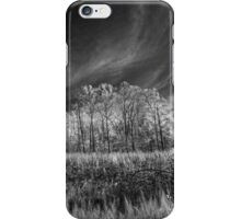In The Clearing iPhone Case/Skin