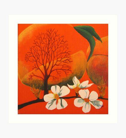 Peach Prelude Art Print