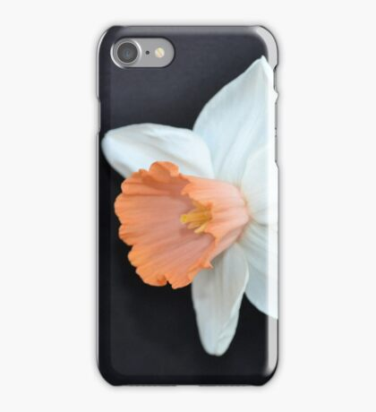 Soft Orange and White Daffodil iPhone Case/Skin