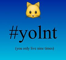 You Only Live Nine Times by sopheliz