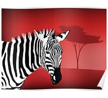 Zebra With a Dramatic Red Background Poster