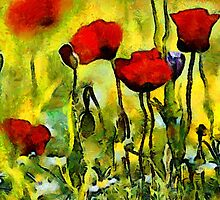 Poppies in the Morning by Bunny Clarke