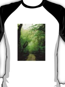 Misty Morning in the Forest T-Shirt