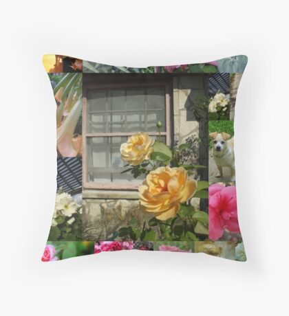 A WINDOW TO MY WORLD Throw Pillow