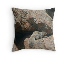 Rocky Squirrel Throw Pillow