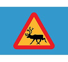 Caution Reindeer Sign Photographic Print