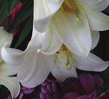 Lily Ballet by Nancy Polanski