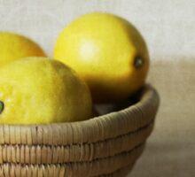 Basket of Lemons Sticker