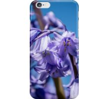 Little things in Life iPhone Case/Skin