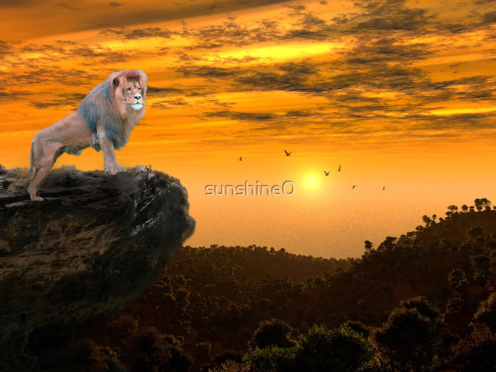 The Lion King by sunshine0