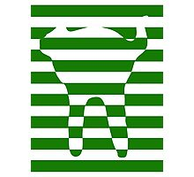 Green striped cat Photographic Print