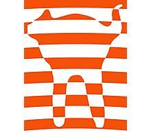 Orange striped cat 3 Photographic Print