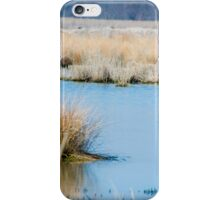 Water Fowl iPhone Case/Skin