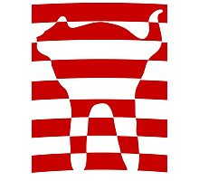 red striped cat 2 Photographic Print
