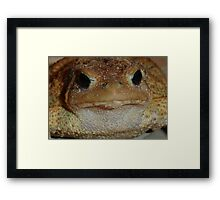 Toad: Toil and Trouble Framed Print