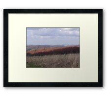 Spring time scenery Framed Print