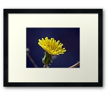 ©NS Yellow Hex IA. Framed Print