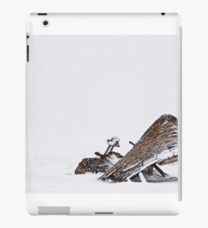 Borgey iPad Case/Skin